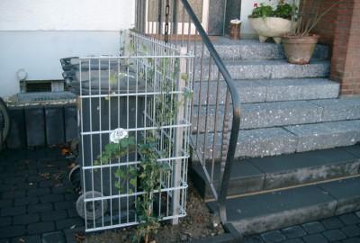 Metall Zaun Gartenbau Landschaftsbau Erftstadt Köln